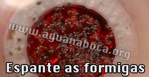 SOLUÇÃO CASEIRA PARA ESPANTAR FORMIGAS