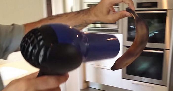 Ele passa o secador numa banana podre… E o impossível acontece! Vais ficar de boca aberta!