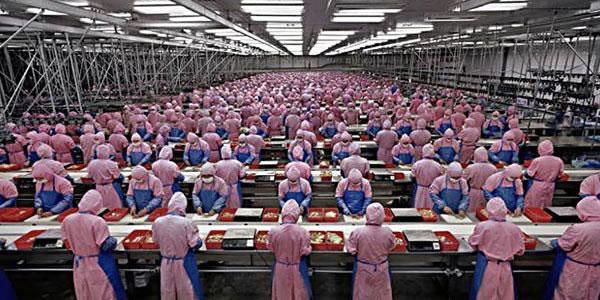 7-Produtos-que-você-compra-e-são-feitos-com-Trabalho-Escravo