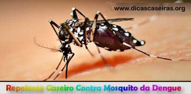 Repelente-Caseiro-Contra-Mosquito-da-Dengue-610x300