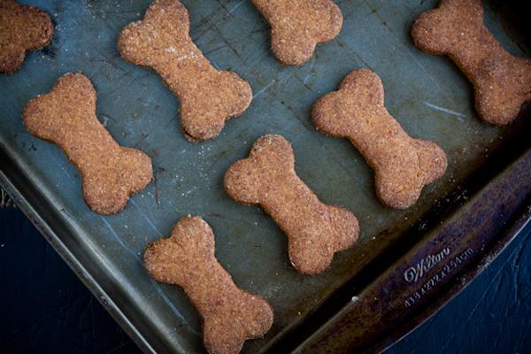 biscoitos-caseiros-para-cachorros