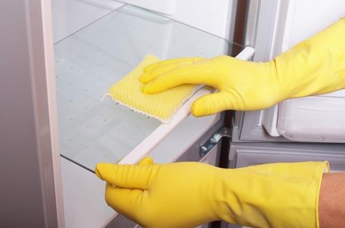 limpeza-da-geladeira-500×330