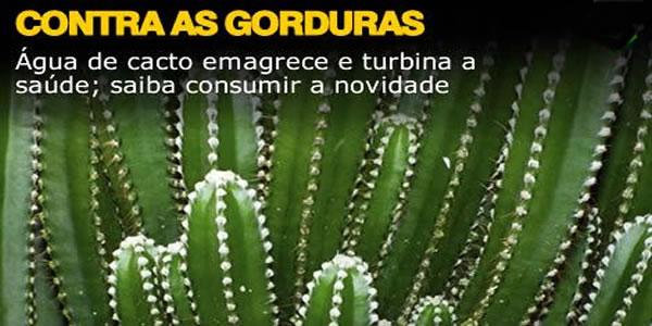 Água-de-cacto-emagrece-e-turbina-a-saúde-saiba-consumir-a-novidade