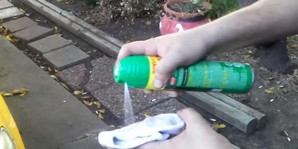 Colocou-spray-anti-mosquitos-numa-meia-e-o-que-faz-a-seguir-é-genial-Vai-adorar-saber