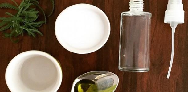 desodorante-caseiro-receita-baratinha-bela-gil-610×300