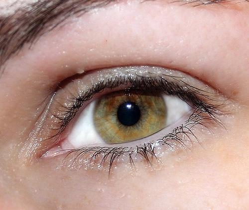 olho-neuroticcamel-500×422-500×422