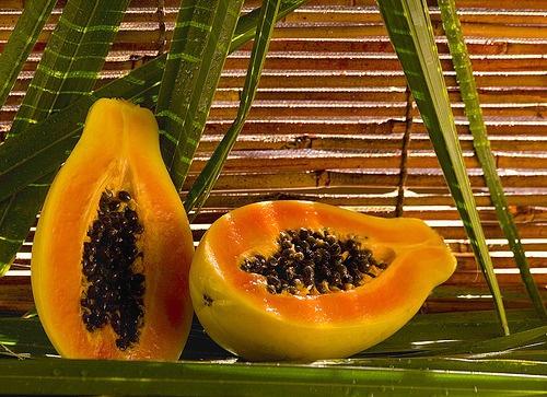 papaya-500×363