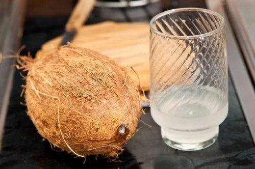 Beber-agua-de-coco-500×332-500×332