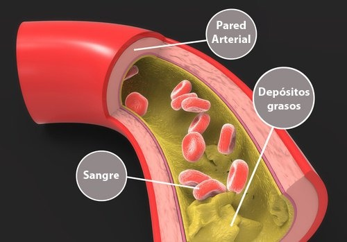 Colesterol2-500×349-500×349