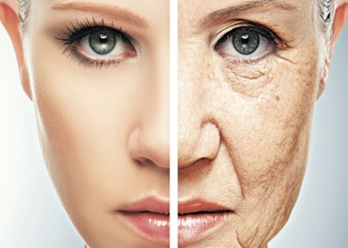 envelhecimento-precoce-500×357