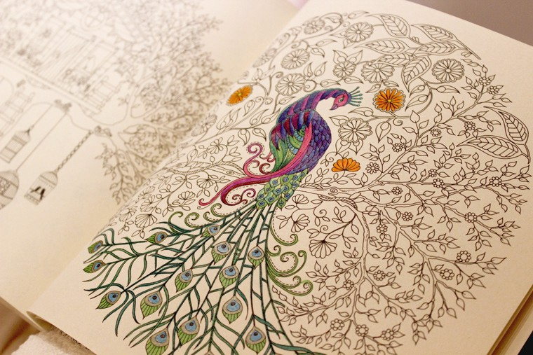 livroscolorir_jardimsecreto_vangogh2-760x507