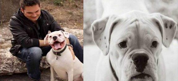 large_bilhete-cachorro