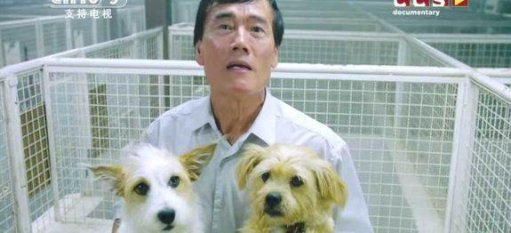 large_chones-prato-cachorro