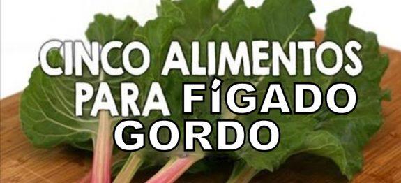 figado_gordo_-_novo