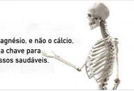 magnesio_e_ossos_-_novo_ed