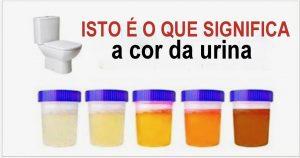 urina_-_cor