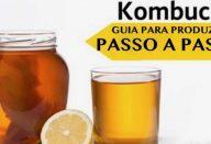 kombucha-610×300