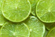 A Dieta do Limão – Como perder 12 Kg em um Mês