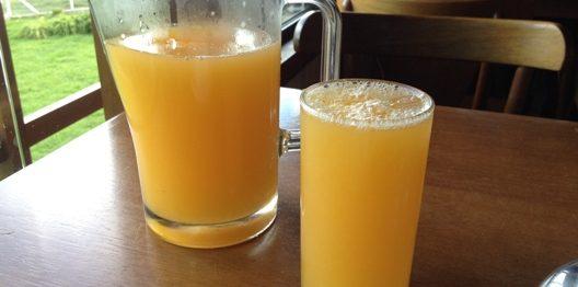 """Receita de Bebida """"BOMBA"""" feita com Laranja para tomar depois dos excessos"""