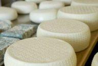 Organic pecorino and blue cheese. Italy